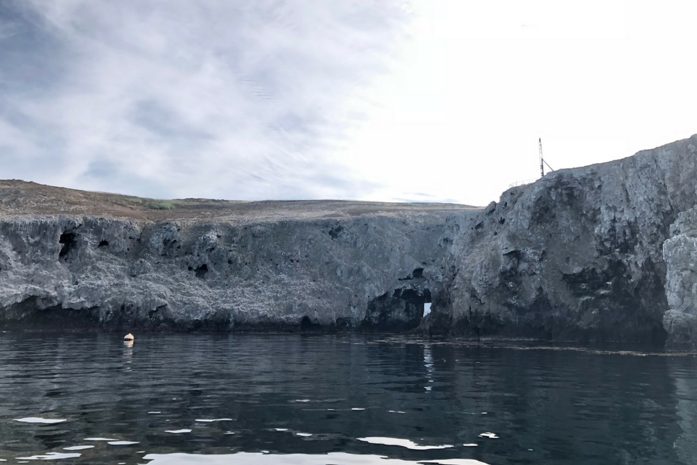How to Get Scuba Certified in LA - Anacapa